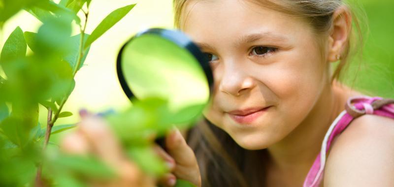 Backyard Saturday - Science of Nature