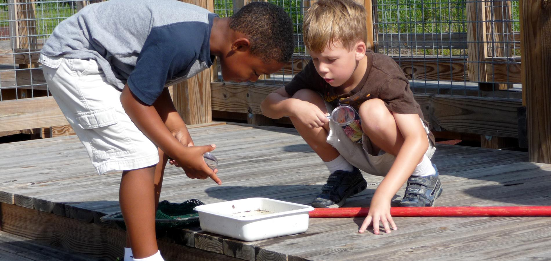 Environmental Education Programs at SSP